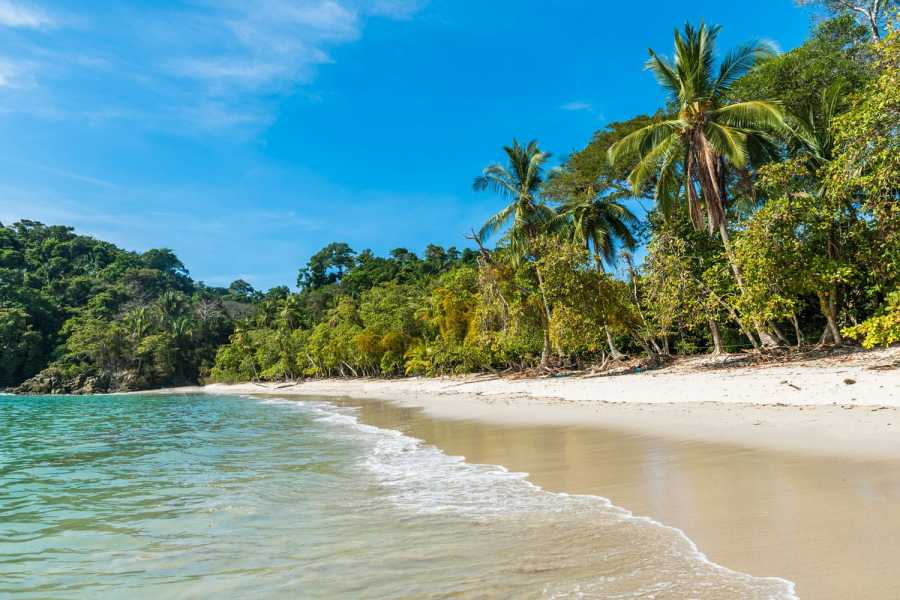 Tour Guanacaste Manuel Antonio National Park
