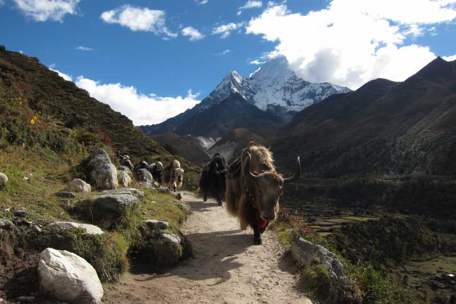 MH Travel Agency EVEREST BASE CAMP TREK-14 DAYS WITH MH TRAVEL