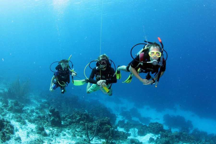 Jan Thiel Diving Guided Shore Dive Package
