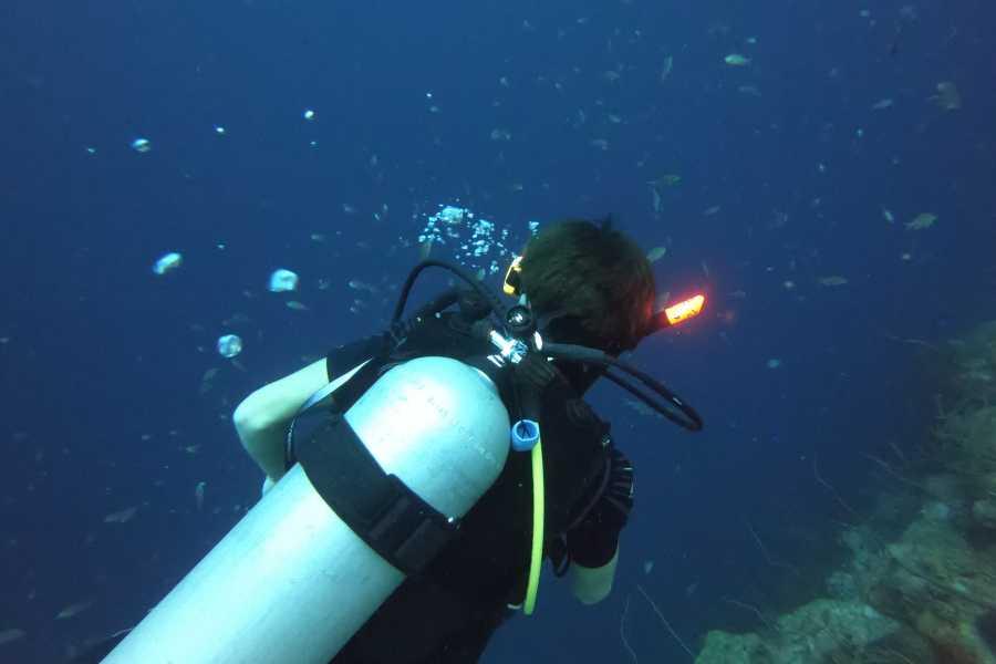 Jan Thiel Diving Guided Shore Dive Trip 4 days