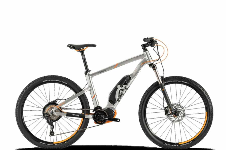 Vienna Explorer - Tours and Day Trips Electric Mountainbike