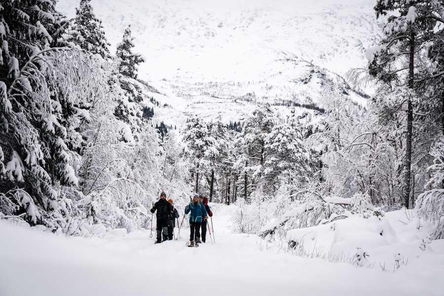 Øystein Ormåsen Snowshoeing in Raundalen