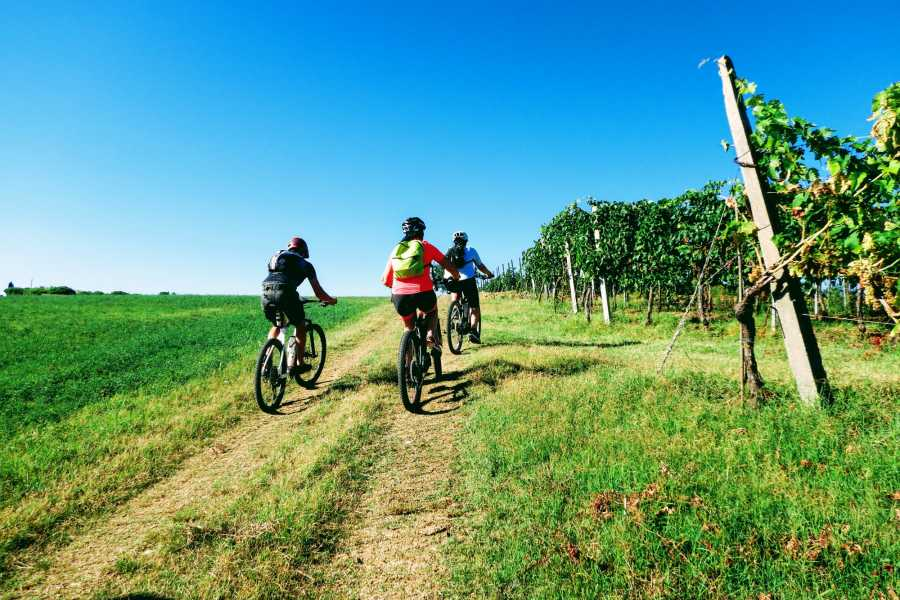 Rimini Reservation Wine Tasting Bike Tour