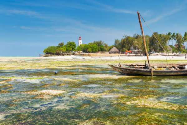 14 Days Tanzania & Zanzibar