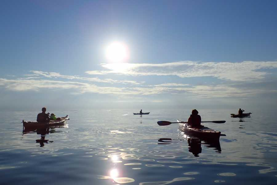 GòKajakk AS Kayak Sunnfjord - Fjord to coast, Førdefjorden