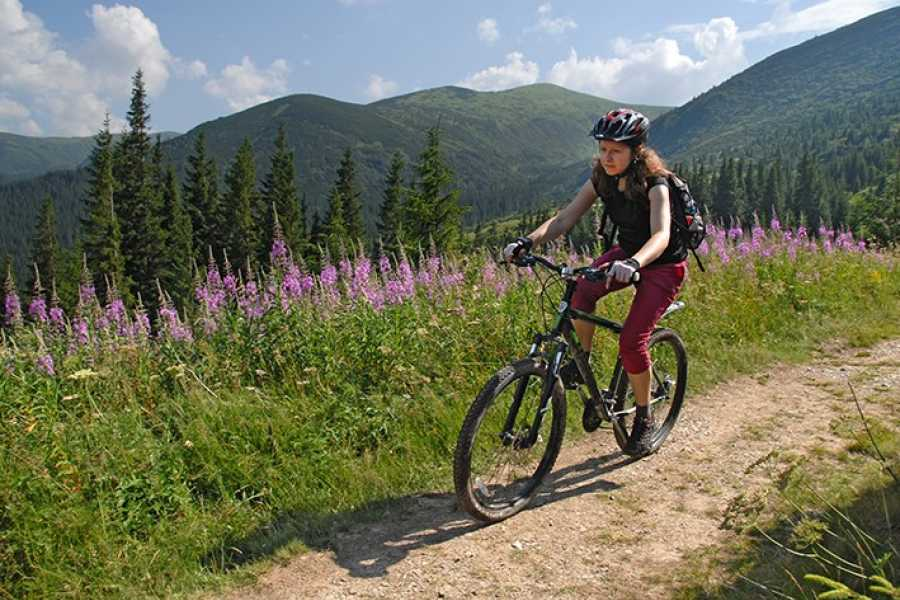 Aventour Food & Sport in the Carpathian Mountains