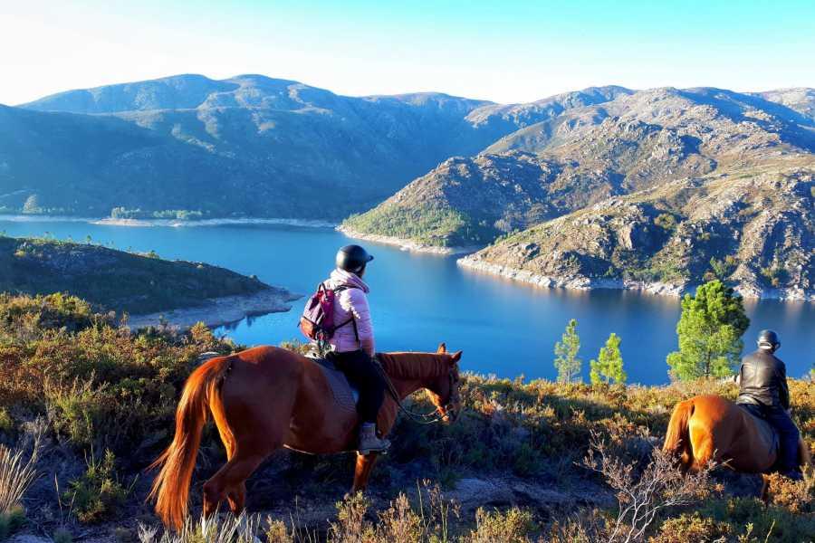 Gerês Equidesafios 2 hours Horseback Ride