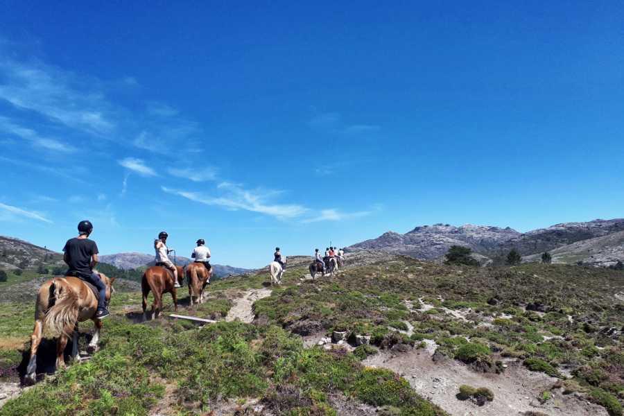 Gerês Equidesafios Passeio de 1 dia a Cavalo