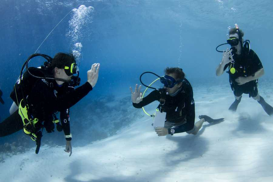 Jan Thiel Diving PADI Assistent Instructeur Cursus