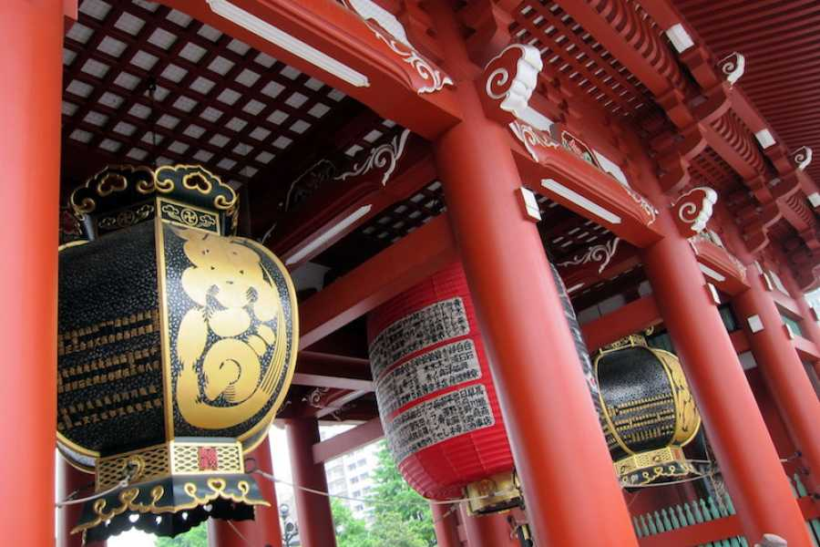 Mina Japan Tour Ciudad de Tokio 4 Horas