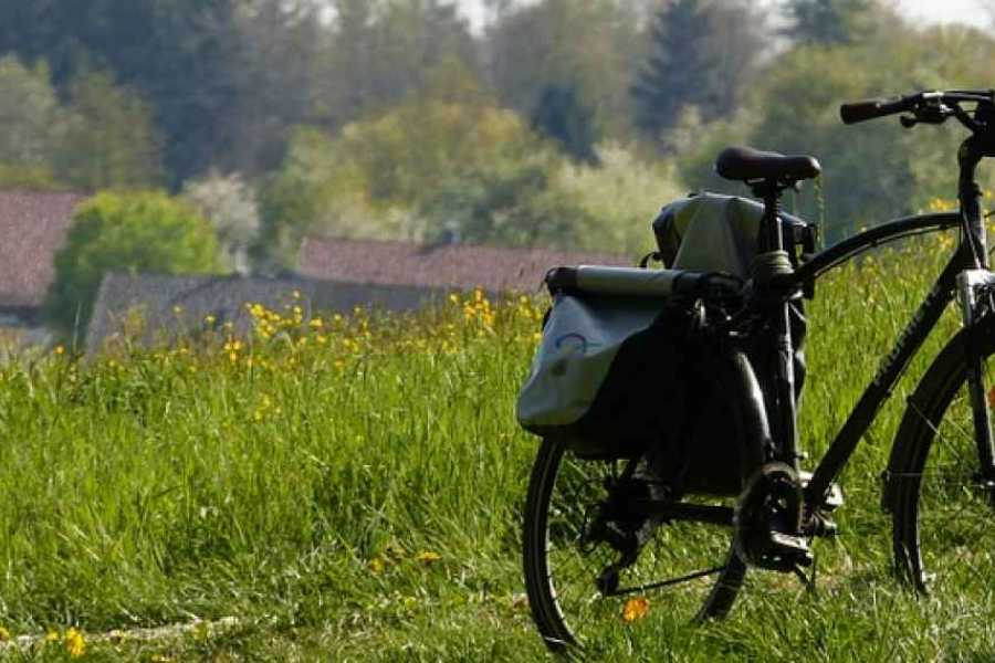 Italy on a Budget tours E-BIKE TUSCANY WITH PIC NIC