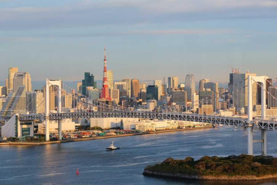Mina Japan Tokyo City Tour 8 Hours - French