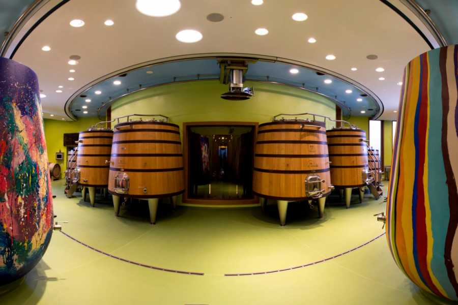 Rimini Reservation MaraMia Wine Experience