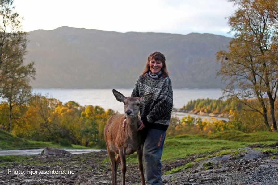 Travel like the locals Sogn & Fjordane Rundtur frå Skeitil Svanøy