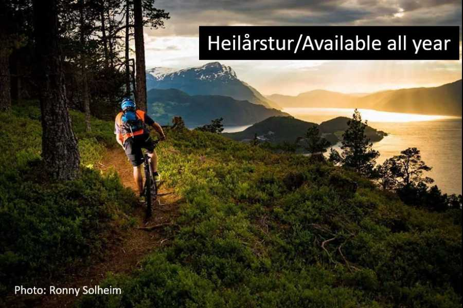 Travel like the locals Sogn & Fjordane Round trip Sandane – Stryn – Sandane