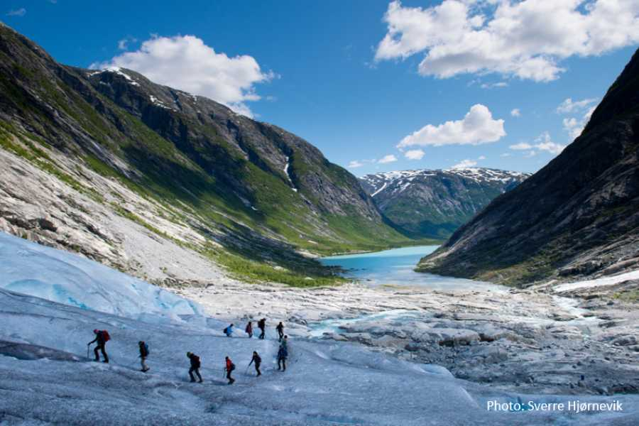Travel like the locals Sogn & Fjordane Round trip Sogndal - Nigardsbreen glacier