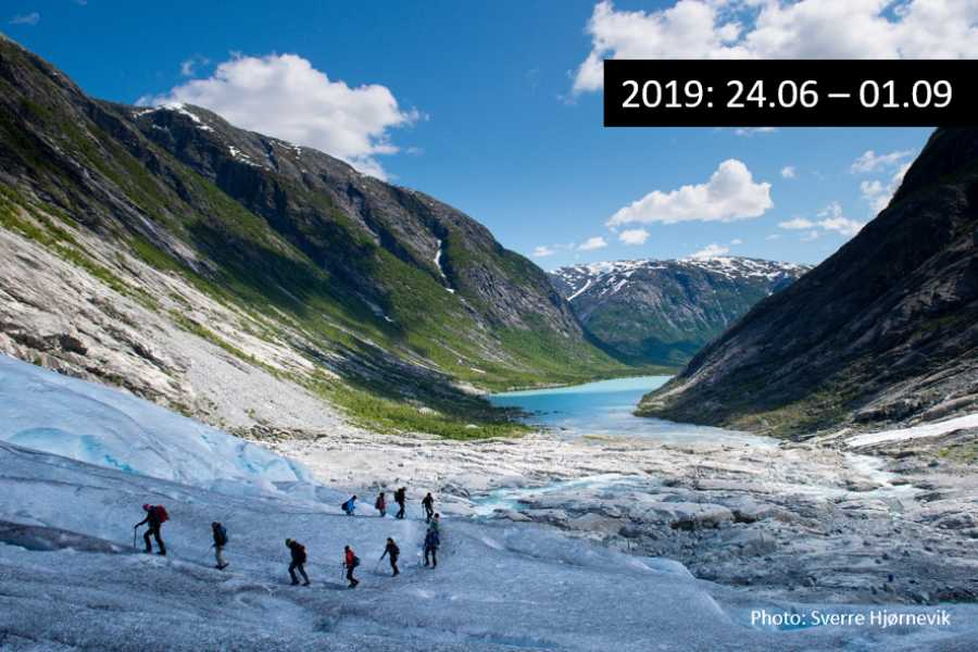 Travel like the locals Sogn & Fjordane Round trip Sogndal - Nigardsbreen glacier