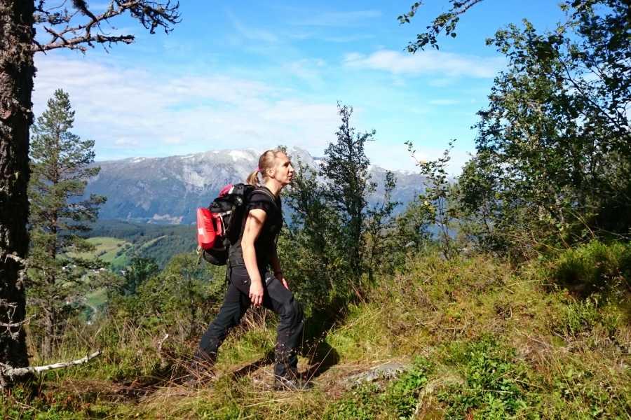 Øystein Ormåsen The viking trail - Sverrestigen