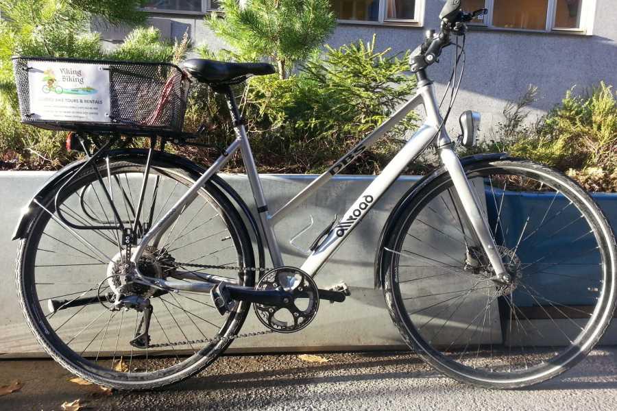 Viking Biking Bike rentals: cruise boats