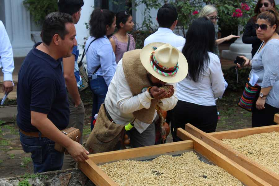 Tours y Tickets Operador Turístico Xalapa y Travesias del Café desde Veracruz - Paquete 3 días 2 noches