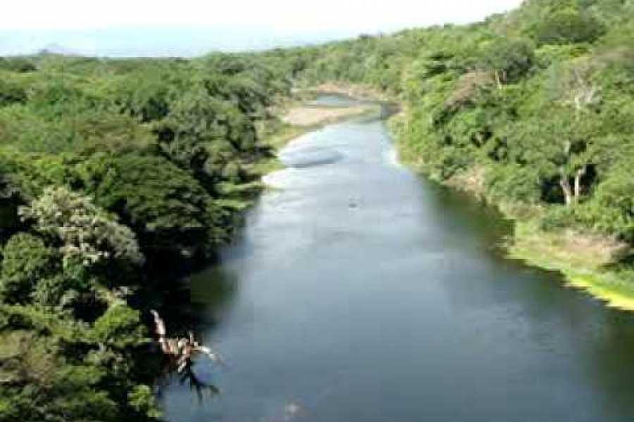 Congo Canopy Papagayo Canopy + Floating Boat Tour