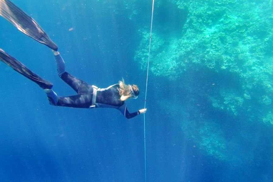 Marina Blue Haiti Boat Freediving