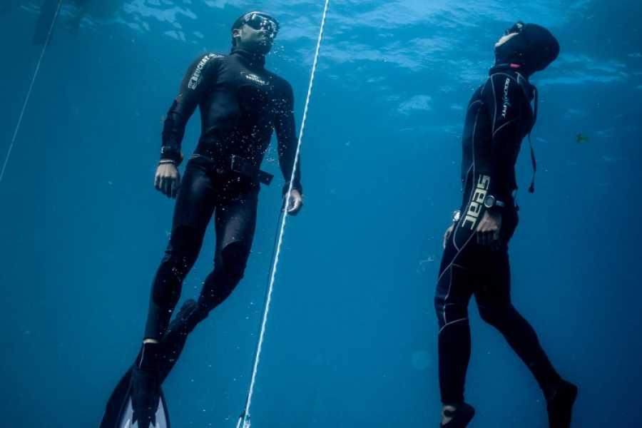 Marina Blue Haiti Freediving Coach Dive