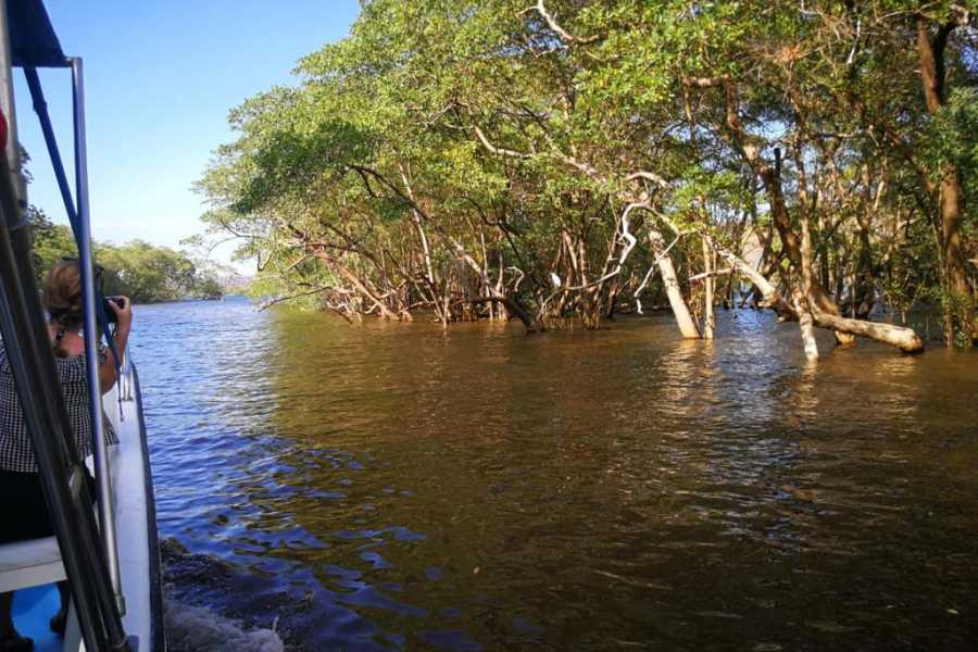 Tour Guanacaste Boat Safari & Nature Walk Tour