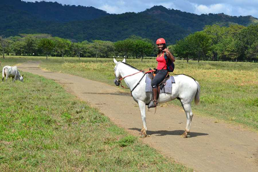 Tour Guanacaste Horseback Riding at Pura Aventura