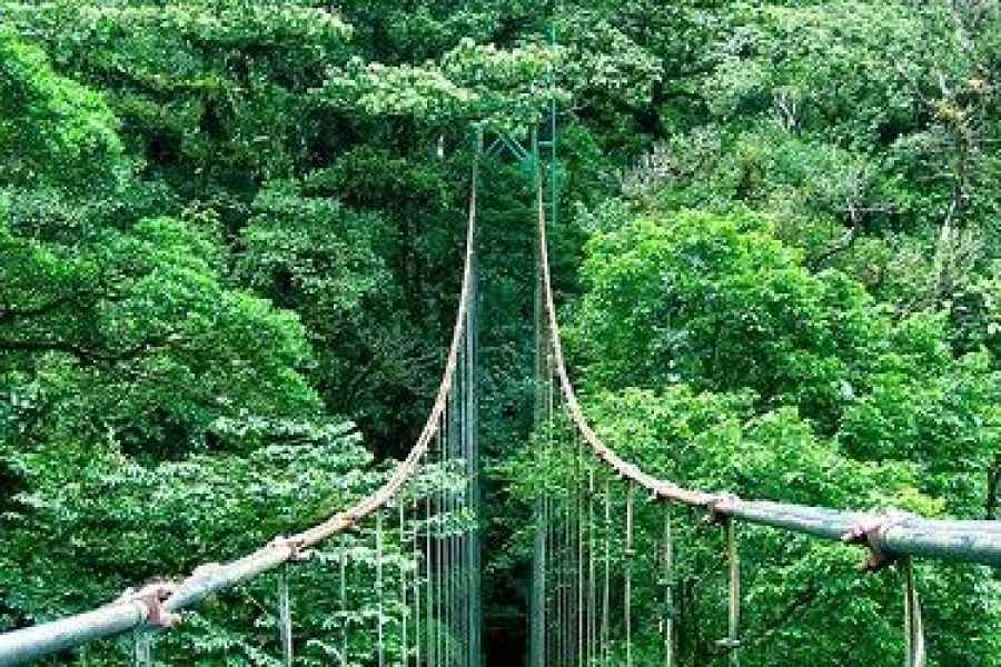 Tour Guanacaste Monteverde - Guanacaste Trans