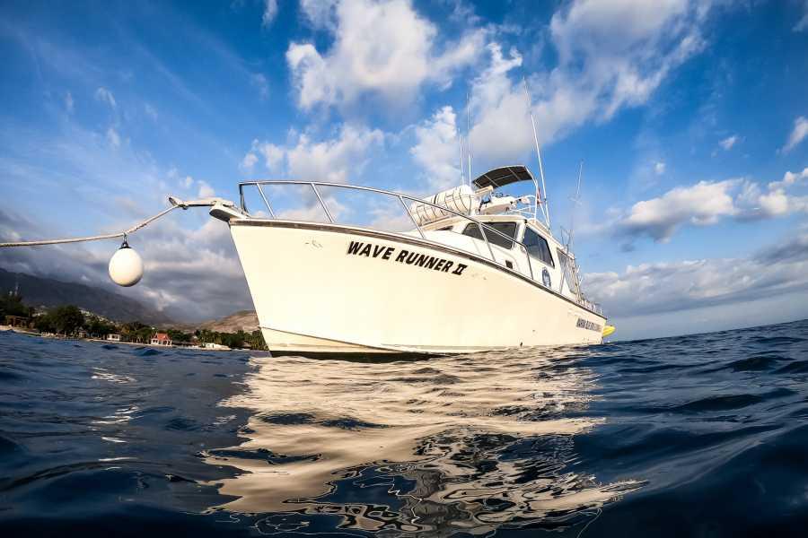 Marina Blue Haiti Private Charter La Gonave