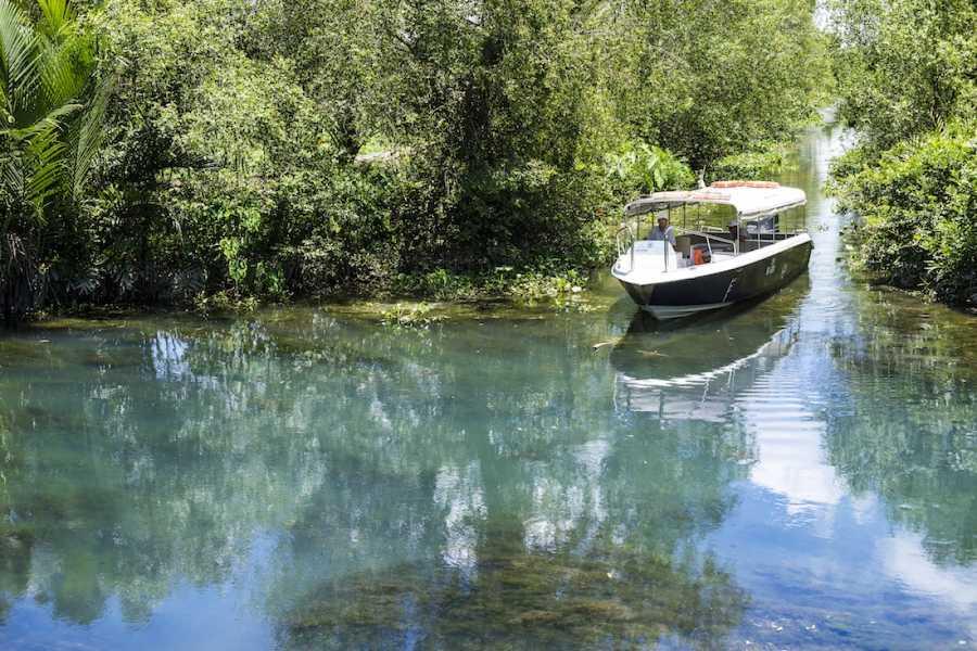 Les Rives Authentic River Experience ДВУХДНЕВНЫЙ ТУР В ДЕЛЬТУ МЕКОНГА