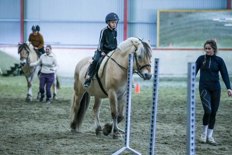 Norsk Fjordhestsenter Riding lessons