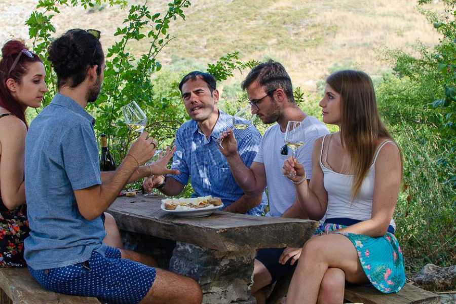 Grekaddict Peza Wine Tasting Tour