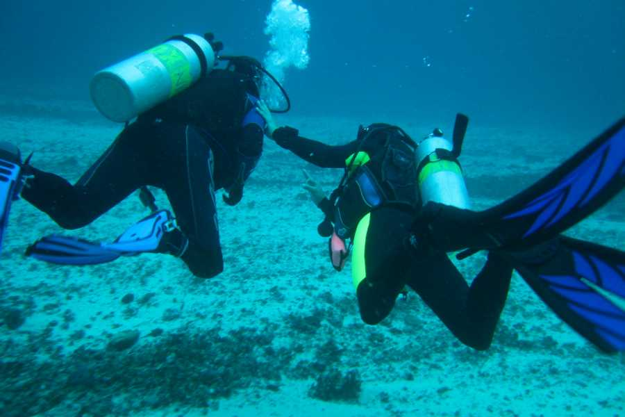 WORLD HOLIDAY TRAVEL AND TOURS Discover Scuba Diving