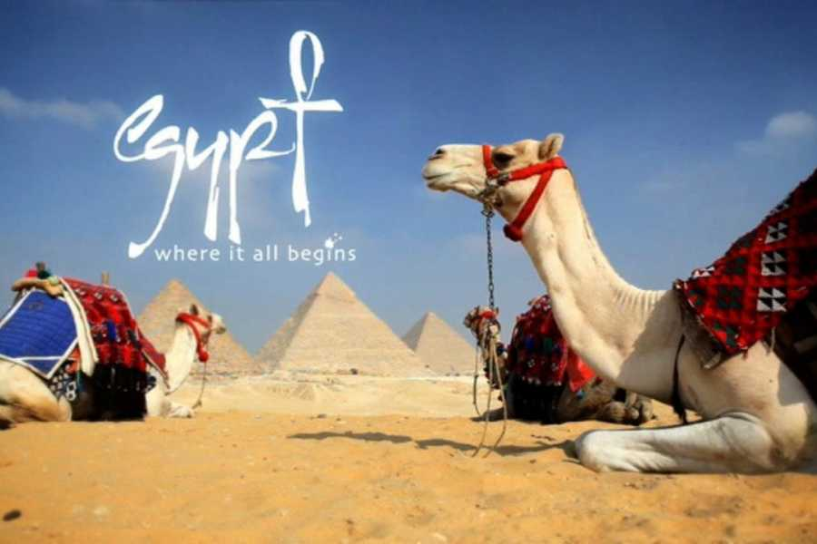 Journey To Egypt Excursion to Great Pyramids of Giza from Cairo