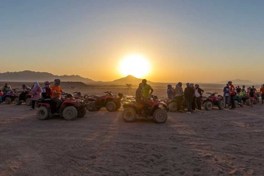 Journey To Egypt Quad Safari at Giza Pyramids