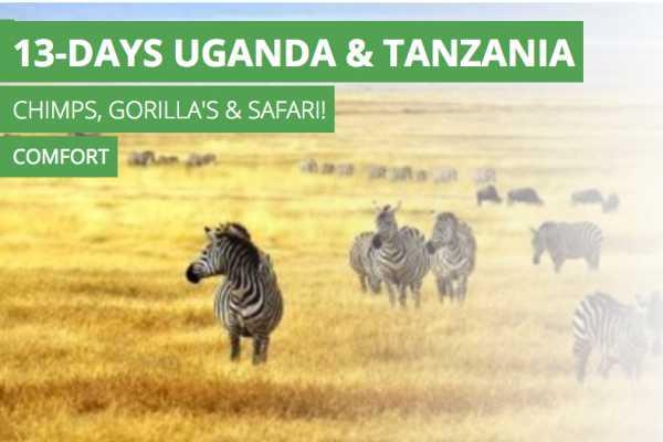 13-Days Uganda & Tanzania Chimps, Gorilla's & Safari! Comfort