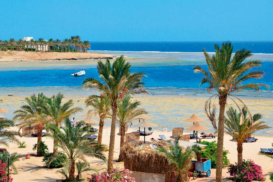 Excursies Egypte Transfert privé de l'aéroport de Marsa Alam aux hôtels de Marsa Alam