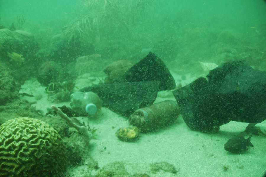 Aquanauts Grenada SGU Clean Up Dive