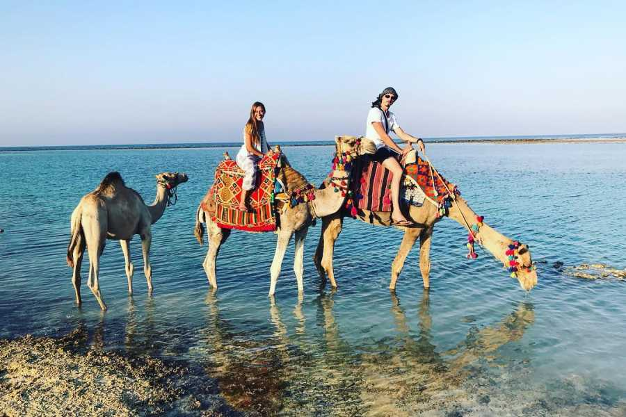 Excursies Egypte Private Transfer from Marsaalam Airport to Luxor Hotels