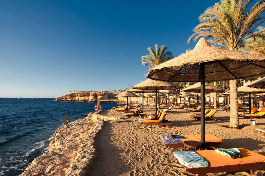 Excursies Egypte Transfer from Cairo Airport to Sharm El Sheikh hotels