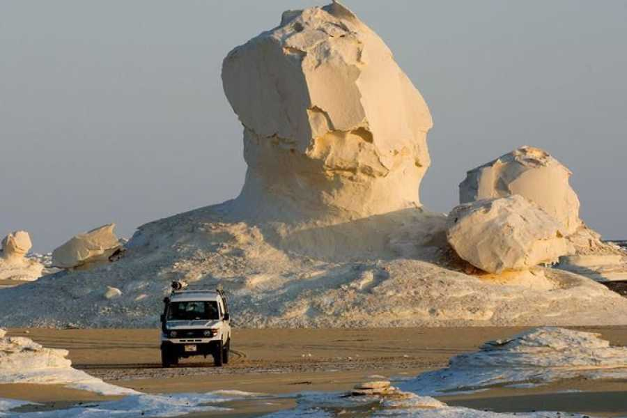 Excursies Egypte Transfer from Cairo Airport to Bahariya Oasis