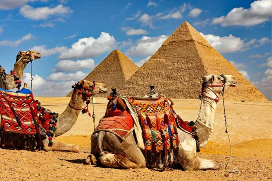 Excursies Egypte Transfer from Cairo Airport to 6th October City