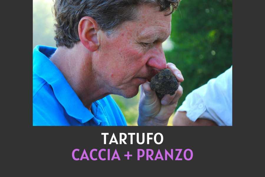 UmbriaMarche Cerca, trova e gusta il tuo tartufo