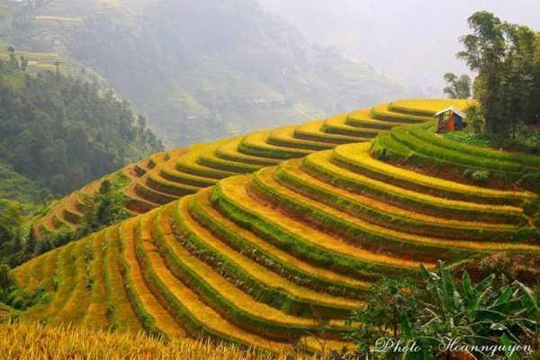 Vietnam 24h Tour Tour Hà Nội – Hoàng Su Phì – Simacai – Bắc Hà 3 ngày 2 đêm