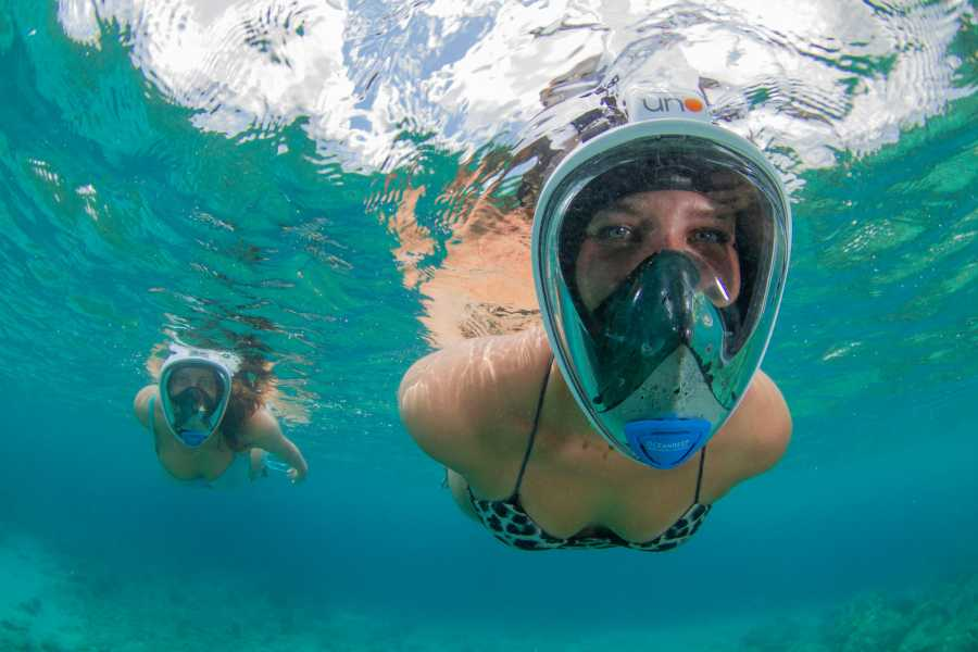 Blue Bay Dive & Watersports Full Day Full Face Mask, Snorkel & Fins Rental