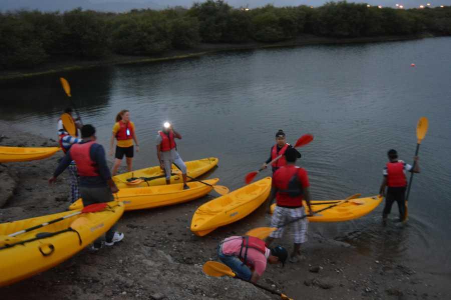 Absolute Adventure Mangrove Sunrise Paddle