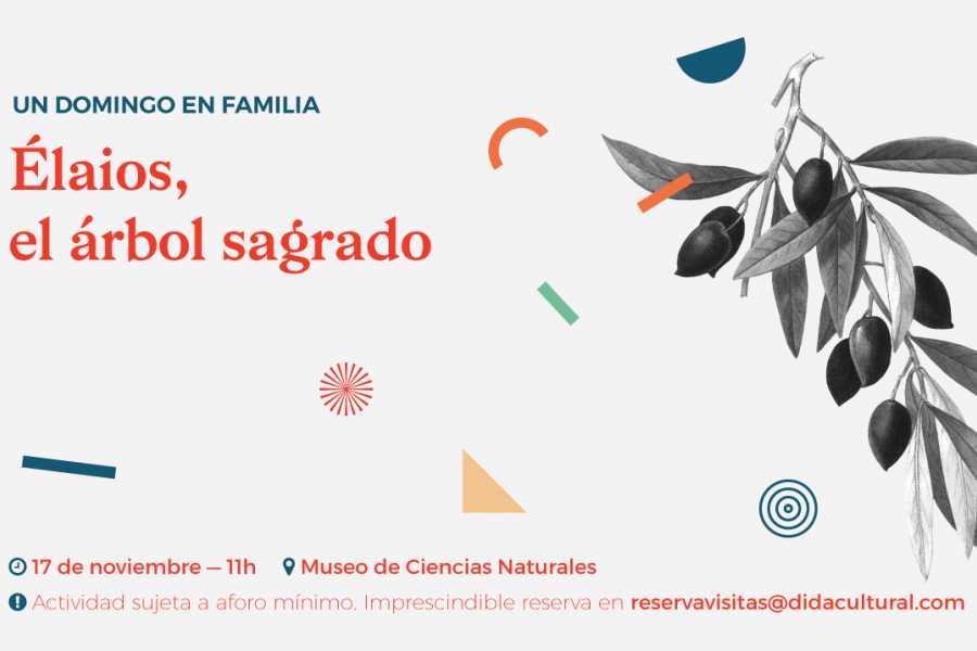 Exdukere S.L. ¡UN DOMINGO EN FAMILIA!/UN DIUMENGE EN FAMÍLIA