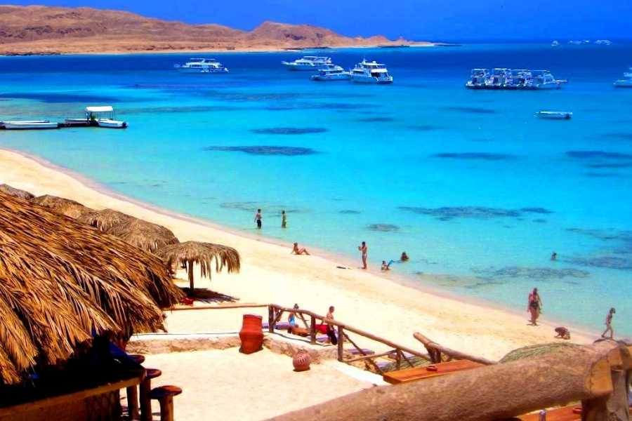 Excursies Egypte Snorkeling Day Trip Paradise Island From Soma Bay